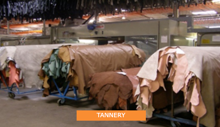 Leather_0000_TANNERY